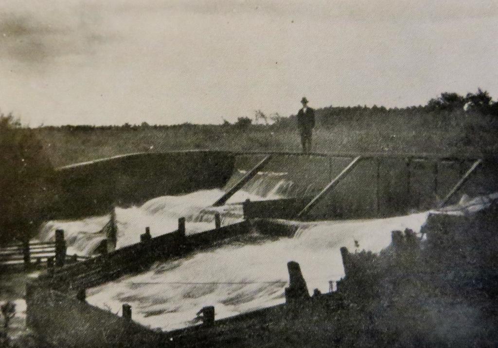Ørredspringet ved Jedsted Mølle i begyndelsen af 1900-tallet.