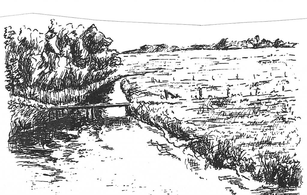 Møllekrog tegnet af Knud Søndermark, Jernved.